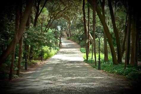 jardinsPeralada
